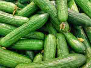 Are Cucumbers a Fruit Or Vegetable? Does it Even Matter?